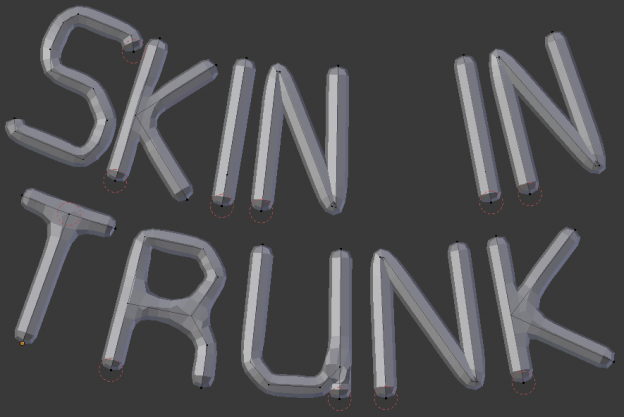 Skin modifier in trunk