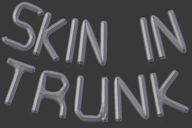 Skin modifier in trunk